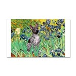 Irises-Am.Hairless T Car Magnet 20 x 12