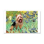Irises - Aussie Terrier Car Magnet 20 x 12