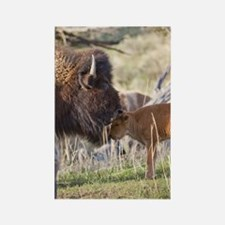 Funny Wildlife Rectangle Magnet