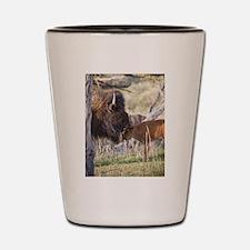 Unique Bison Shot Glass