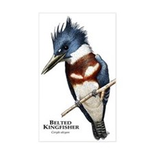 Belted Kingfisher Decal