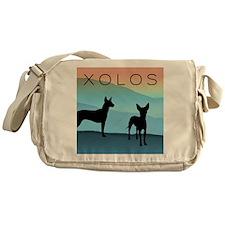 Blue Mountain Xolo Messenger Bag