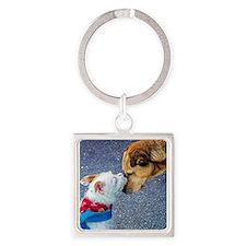 Cute Boston terrier Thermos® Food Jar