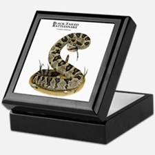 Black-Tailed Rattlesnake Keepsake Box