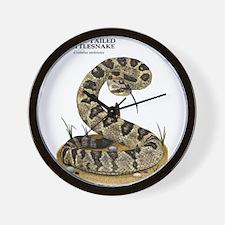 Black-Tailed Rattlesnake Wall Clock