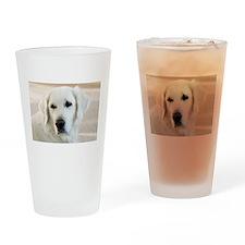 Golden Retriever Drinking Glass