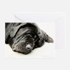 Neapolitan Mastiff Greeting Card
