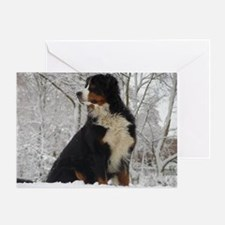 Bernese Mountain Dog Greeting Card