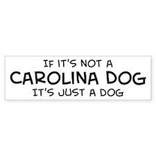 If it's not a Carolina Dog Bumper Car Sticker