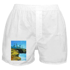 Sunset Cliffs by Riccoboni Boxer Shorts