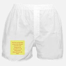 Wisdom of Plato Boxer Shorts