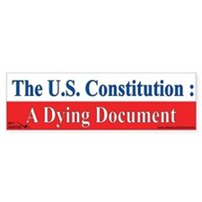 The U.S. Constitution : A Dyi Car Sticker