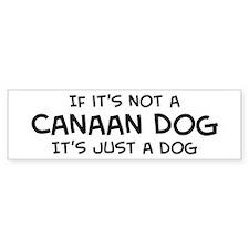 If it's not a Canaan Dog Bumper Bumper Sticker