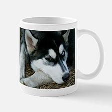 Siberian Husky Mug
