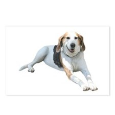 Hound Dog Smile Postcards (Package of 8)