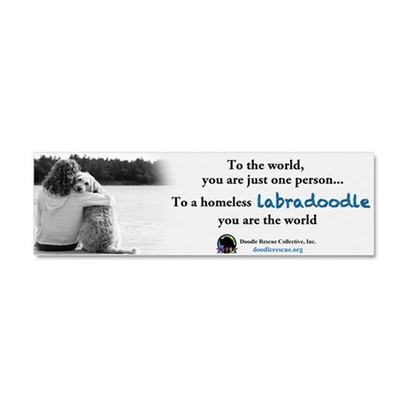 DRC To the World Labradoodle Magnet 10 x 3