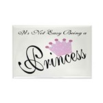 Party Princess Rectangle Magnet (10 pack)