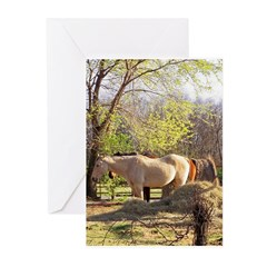 cOUNTRY sCENE Greeting Cards (Pk of 20)