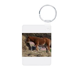 cOUNTRY sCENE Keychains