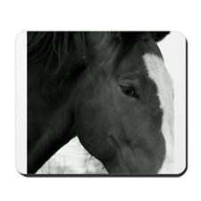 bLACK AND WHITE pHILLY Mousepad