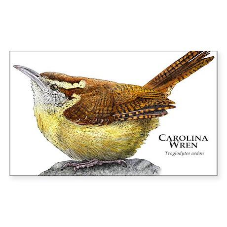 Carolina Wren Sticker (Rectangle)