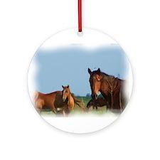 oKLAHOMA wILD HORSES Ornament (Round)