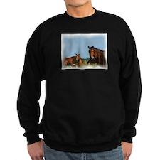 oKLAHOMA wILD HORSES Sweatshirt