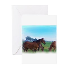 oKLAHOMA WILD hORSES Greeting Card
