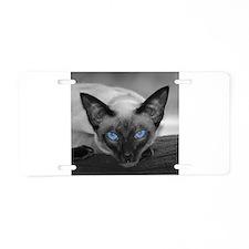 Siamese Cat B&W Photo Art Aluminum License Plate