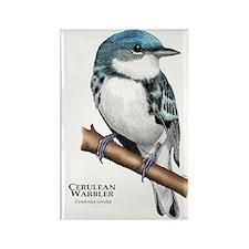 Cerulean Warbler Rectangle Magnet