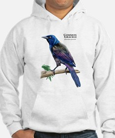 Common Grackle Hoodie