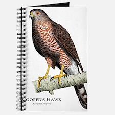 Cooper's Hawk Journal