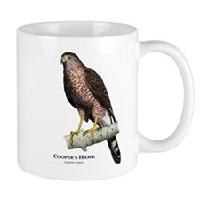 Cooper's Hawk Mug