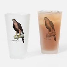 Cooper's Hawk Drinking Glass