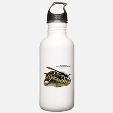 Common Yellowjacket Wasp Water Bottle