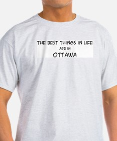 Best Things in Life: Ottawa Ash Grey T-Shirt