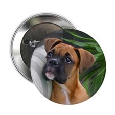 Boxer Puppy Pin/Button