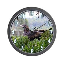 Wedge Tailed Eagle Wall Clock