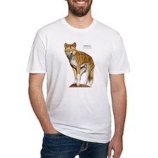 Dingo Shirt