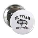 Buffalo New York 2.25