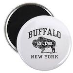 Buffalo New York Magnet