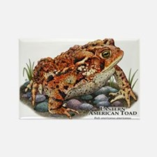Eastern American Toad Rectangle Magnet