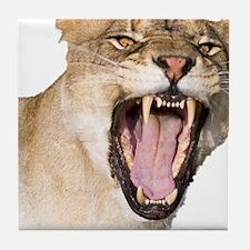Roaring Lioness Tile Coaster