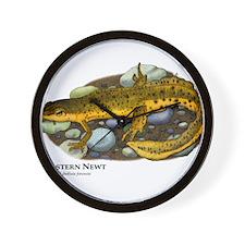 Eastern Newt Wall Clock