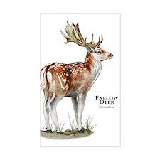 Fallow Deer Decal