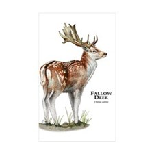 Fallow Deer Decal