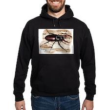 European Stag Beetle Hoodie