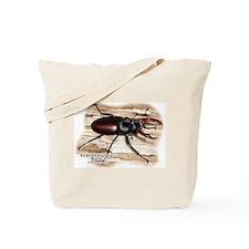 European Stag Beetle Tote Bag