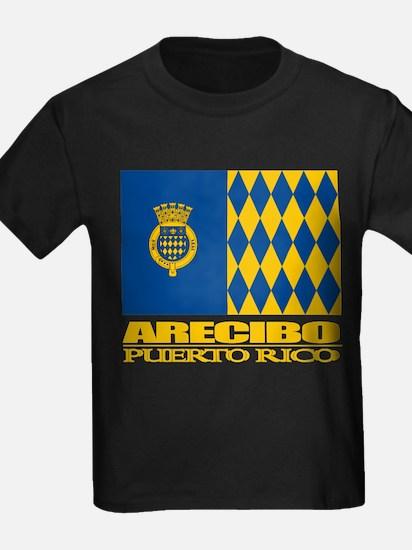 Arecibo Flag T