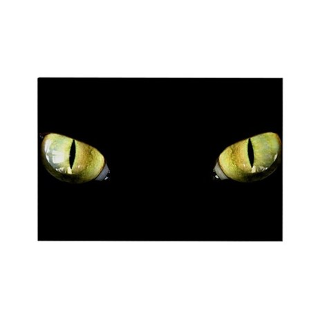 Cat Eyes Rectangle Magnet